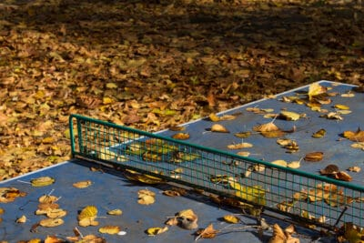 Horizontal outdoor blue ping pong table with metallic net in a park covered in autumn leaves